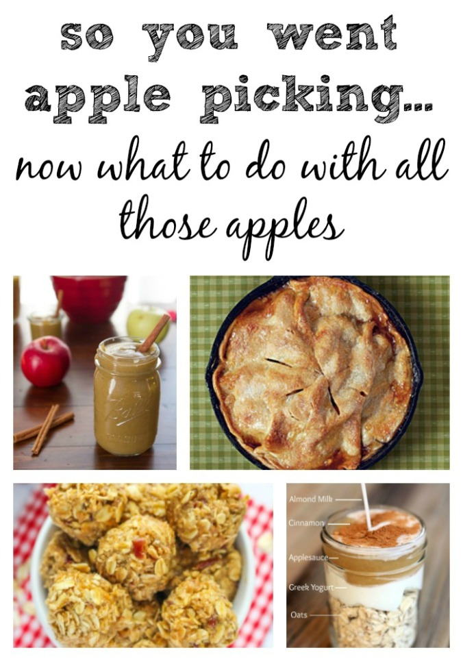 apple-recipe-roundup