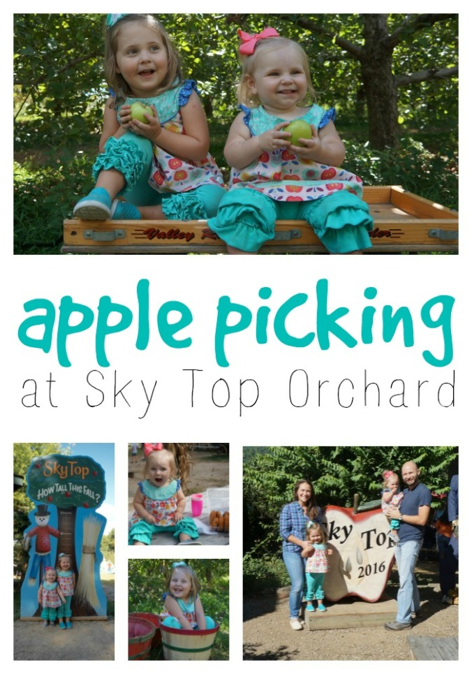 sky-top-orchard-apple-picking